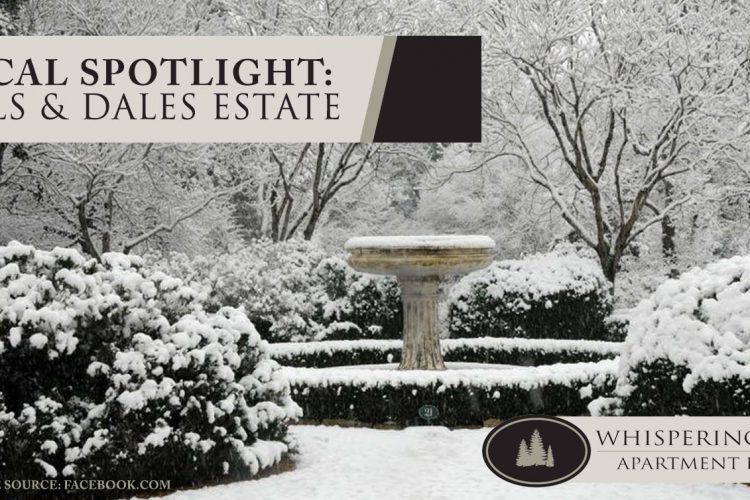Local Spotlight: Hills & Dales Estate