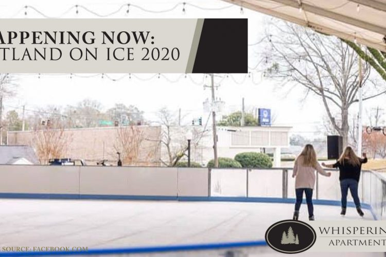Happening Now: Sweetland on Ice 2020