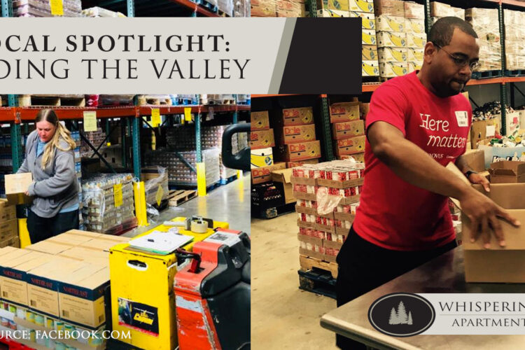 Local Spotlight: Feeding the Valley