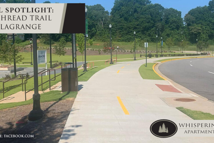 Local Spotlight: The Thread Trail in LaGrange
