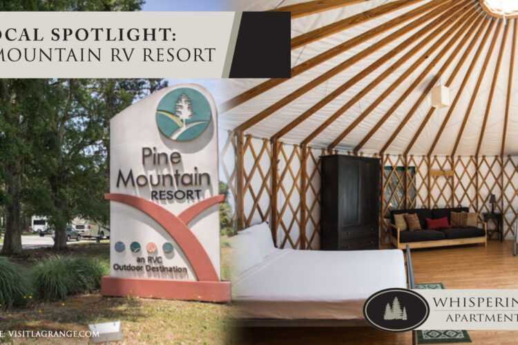 Local Spotlight: Pine Mountain RV Resort